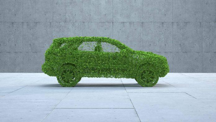 Imitation voiture en brins d'herbe